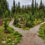 Off the Beaten Path: Three Travel Tips