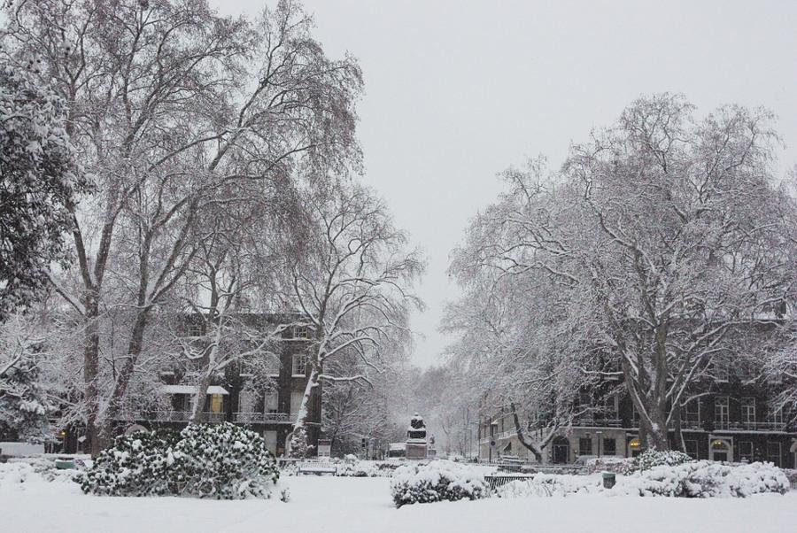 Bloomsbury Square Gardens