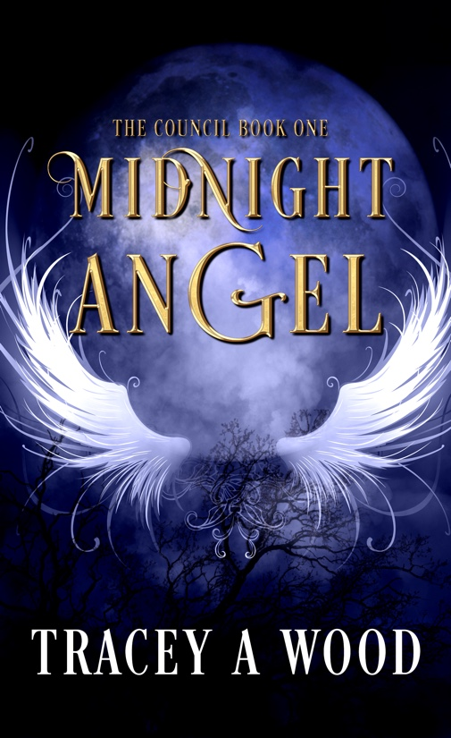 midnight-angel-soulmate-505_505x825-2