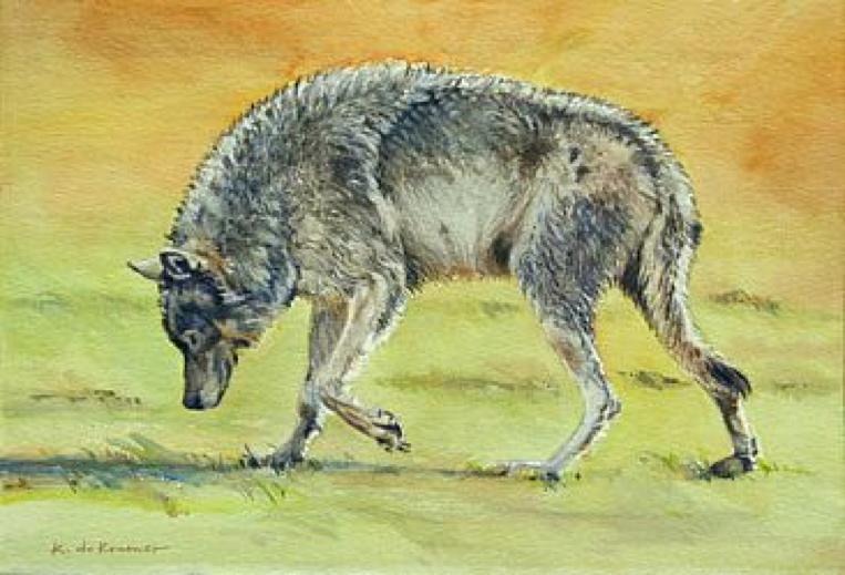 Scent -Trail Wolf by Karyn deKramer
