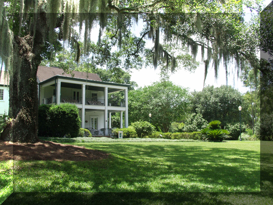 Leu House Museum in Leu Garden. It's framed by a southern live oak and looks like it could be in North Carolina except that its lawn is studded with palms