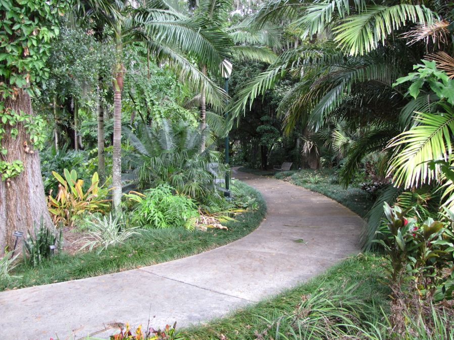 Pathway through the Tropical Stream Garden, Leu Gardens