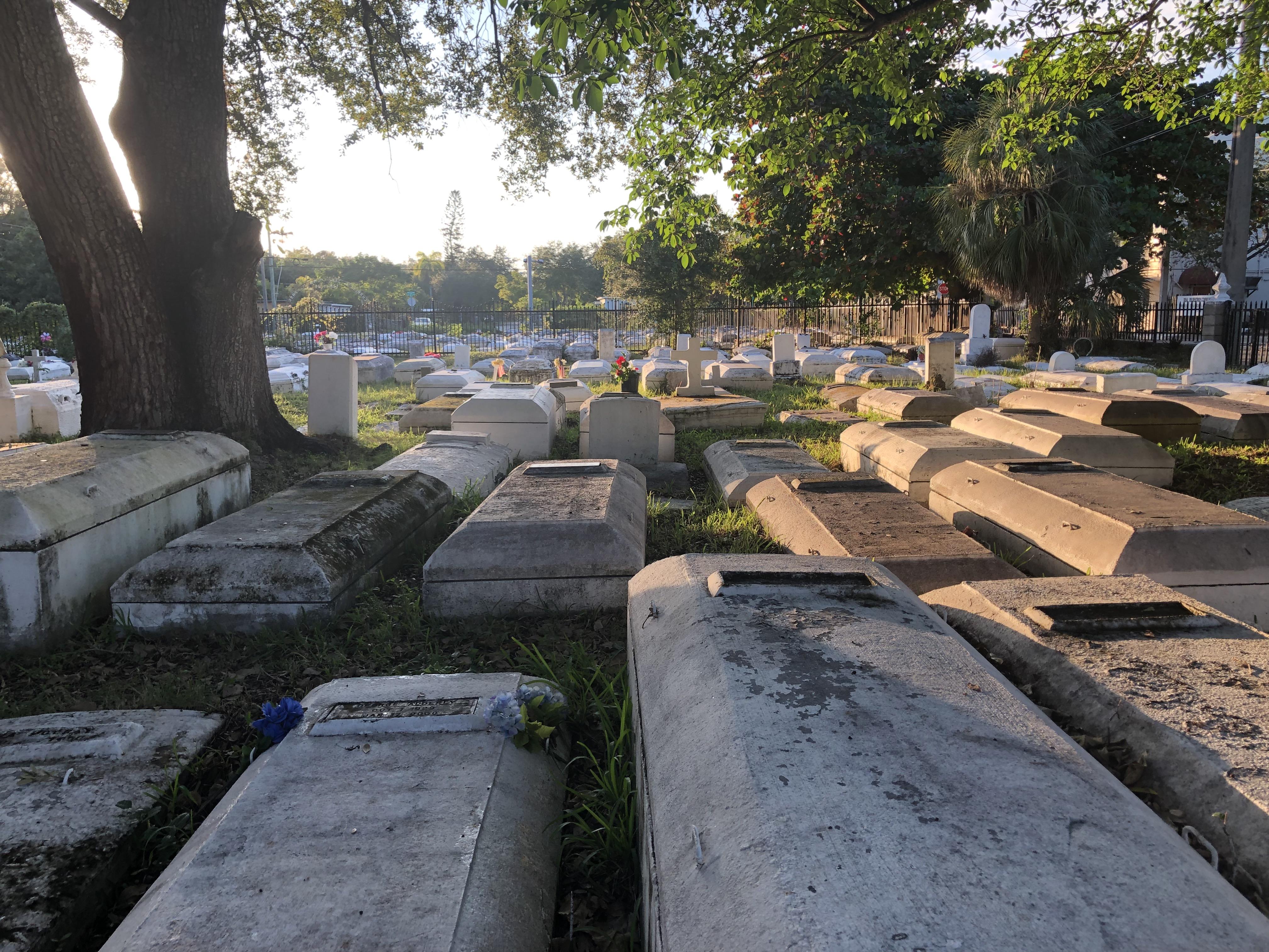 Charlotte Jane Memorial Park Cemetery